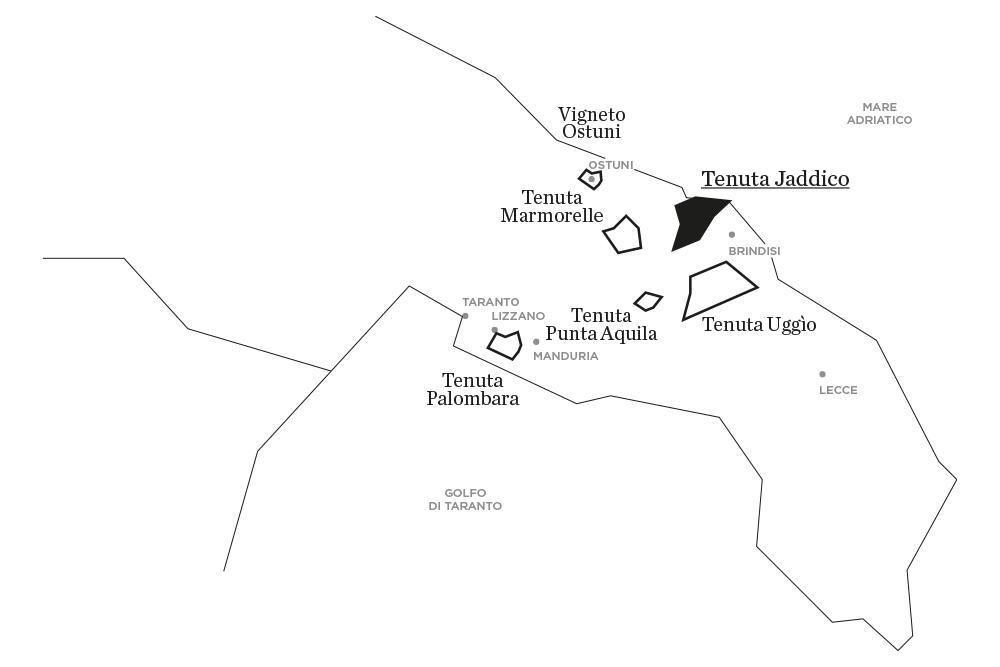 Jaddico | Le tenute di Tenute Rubino - Casa del Susumaniello