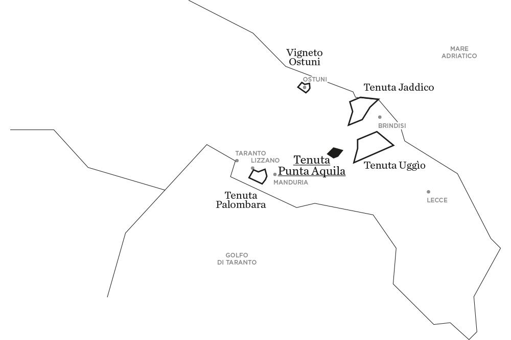 Punta Aquila | Le tenute di Tenute Rubino - Casa del Susumaniello