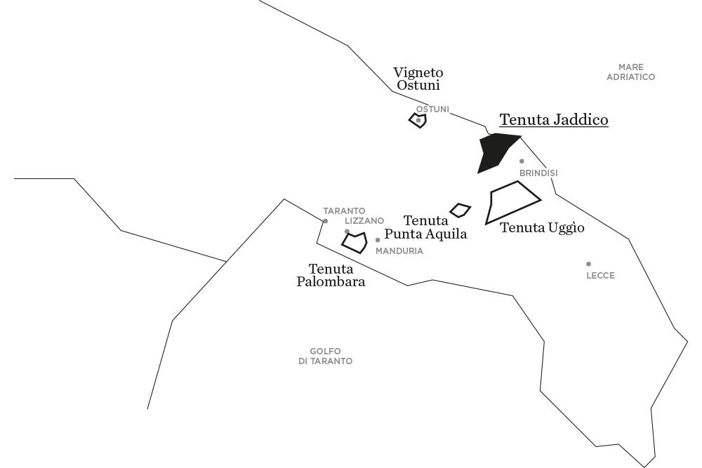 Jaddico | Tenute Rubino | I Vini della Puglia