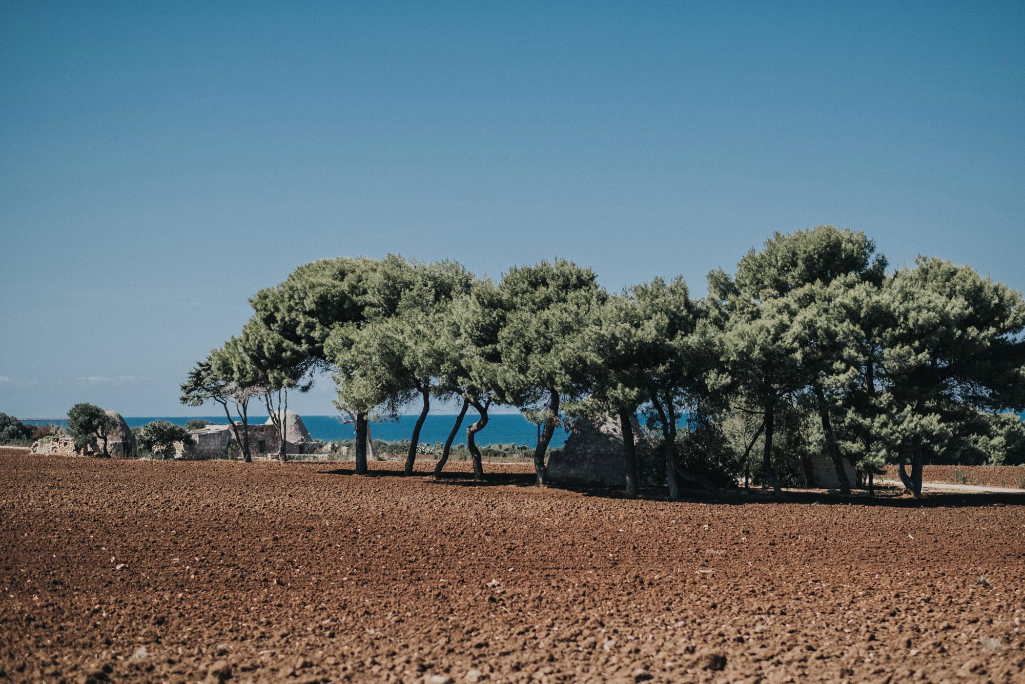 Il Salento - Tenute Rubino - Vini del Salento