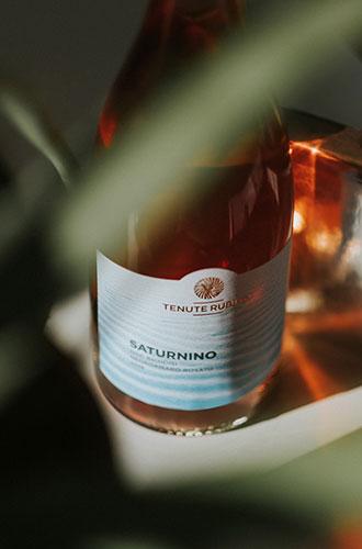 Saturnino - Negroamaro - Tenute Rubino | I vini della Puglia