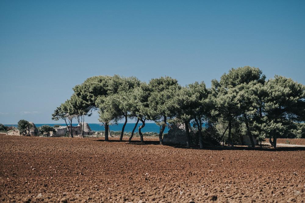 Famiglia Rubino | Tenute Rubino Brindisi | I Vini della Puglia