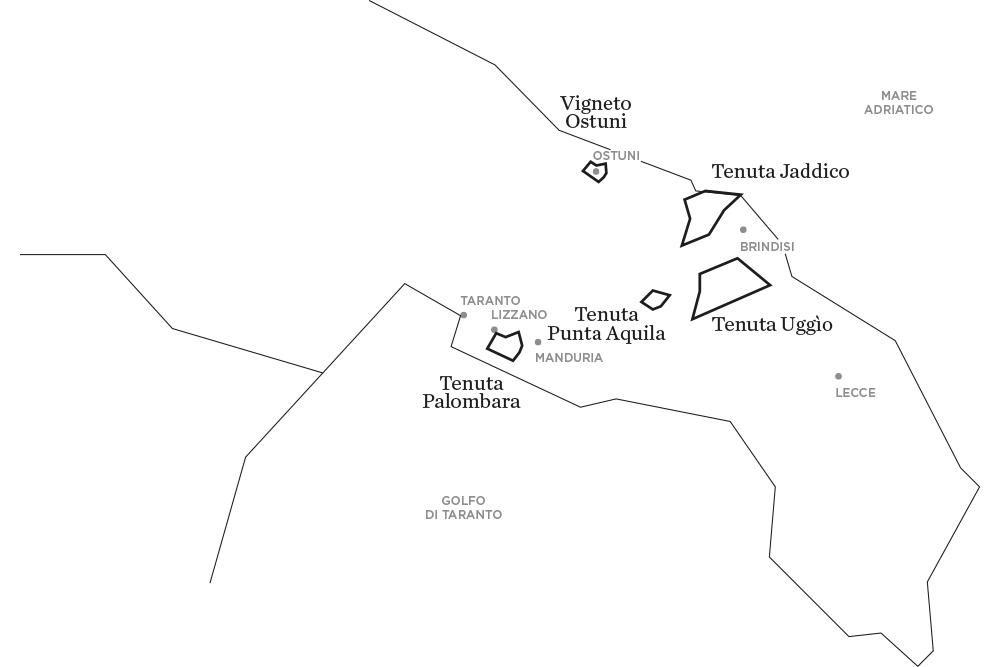 Le tenute di Tenute Rubino - Casa del Susumaniello